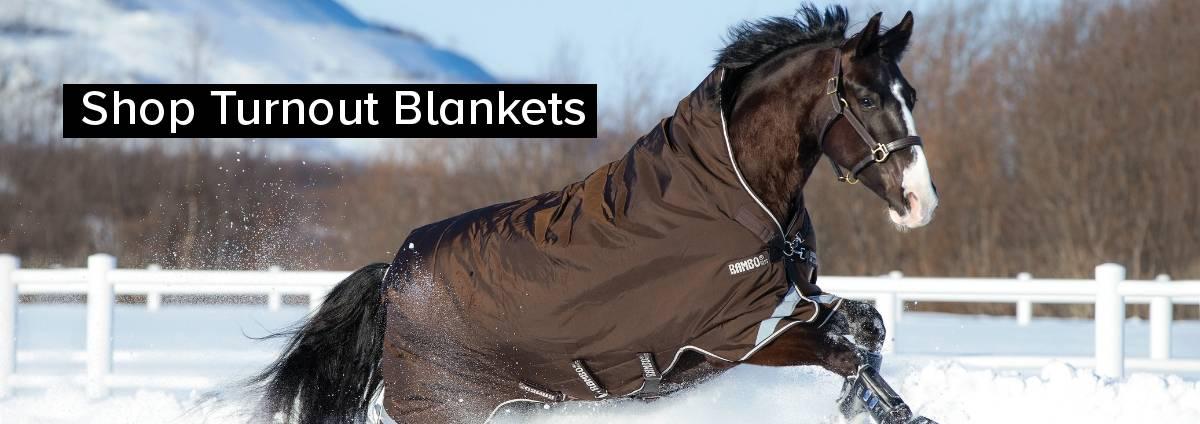 Shop Turnout Blankets
