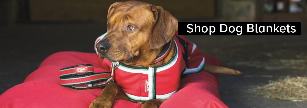 Shop Dog Blankets