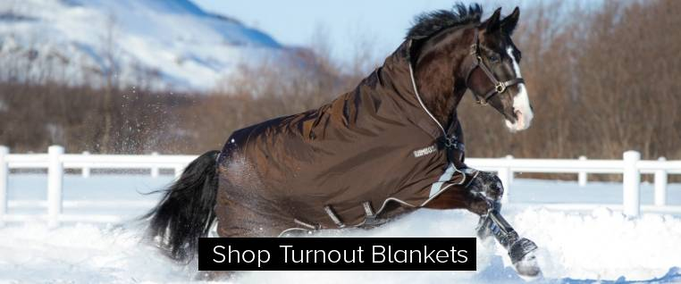 Turnout Blankets